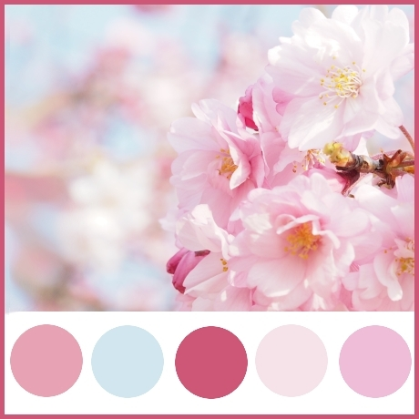 Colour Theme - pale pink, cherry blossom pink, deep pink and sky blue