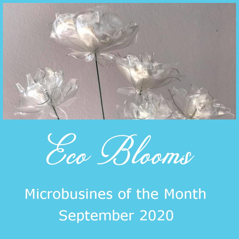 Microbusiness of the Month – September 2020 – Eco Blooms