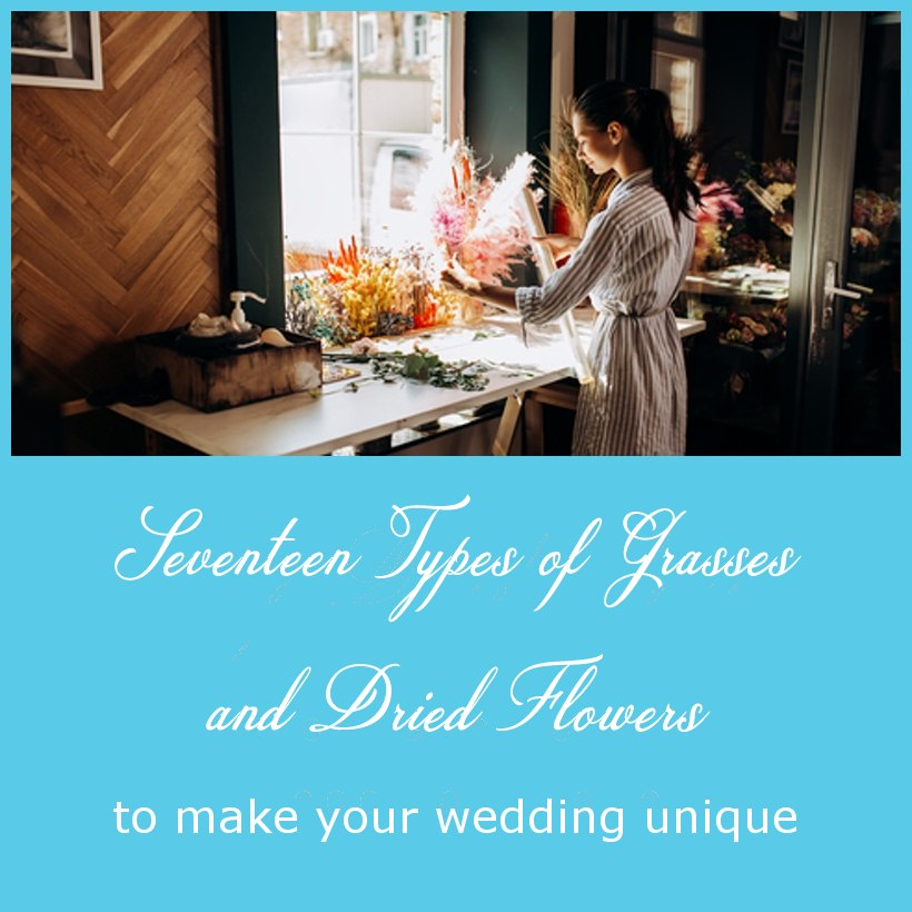 Seventeen Types of Grasses and Dried Flowers to make Your Wedding Unique